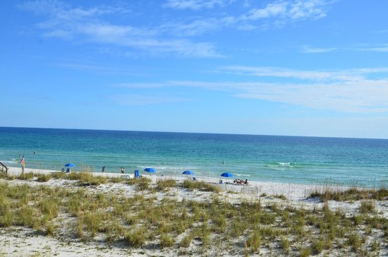 Margaritaville Beach Hotel: Gulf of Mexico behind the hotel