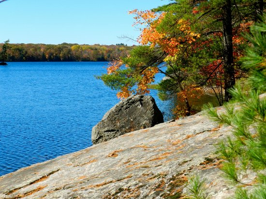 Torrance, Canadá: Sloping rocks by shore ideal for sunning and picnicking