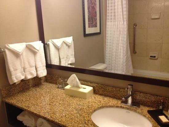 Embassy Suites by Hilton West Palm Beach Central : bath room