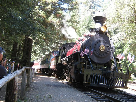Skunk Train : Rest Stop in Northspur