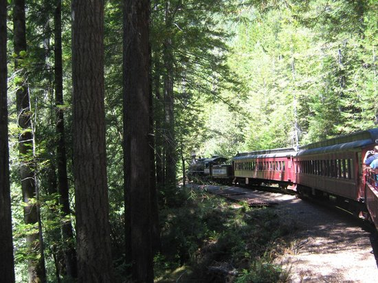 Skunk Train : On the way back