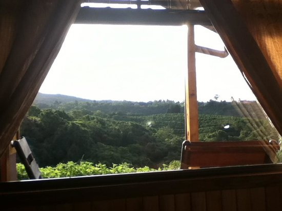 Hotel Mango Valley: View out a window in our cottage