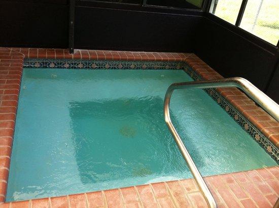 Comfort Inn Hammond: Hot Tub