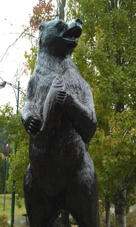 Manning Park Resort: bear