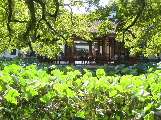 Xihu Park of Fuzhou: One of the west-side courtyards in a lotus pond.