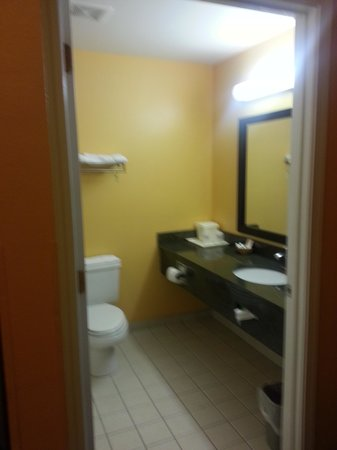 Magnolia Inn and Suites: Bathroom area