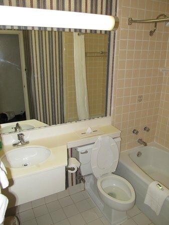 BEST WESTERN Harborside Inn & Kenosha Conference Center: BEST WESTERN Harborside Inn: bathroom