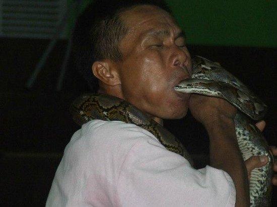 Phuket Cobra Show and Snake Farm: змеиное шоу