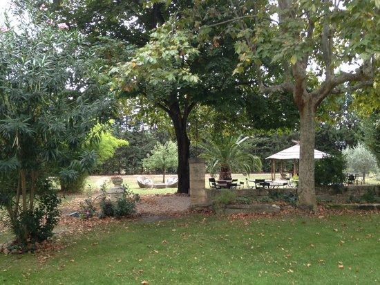Mas de Capelou : a view of the grounds