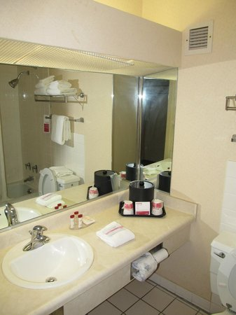 Ramada Mitchell Hotel and Conference Center: Ramada Inn Mitchell : bathroom