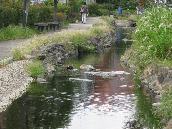 Egawa Seseragi Boardwalk