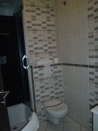 Vila Terazije: Bathroom and shower