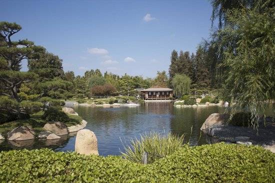 Garden Is So Green Picture Of The Japanese Garden Los Angeles Tripadvisor