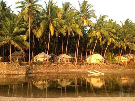 Blue Lagoon Cola Shivashaktiyoga At Beach Resort