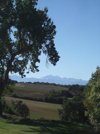 Le Domaine de Loustalviel: View from driveway