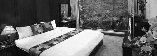 Aquarius Boutique Hotel: deluxe double room