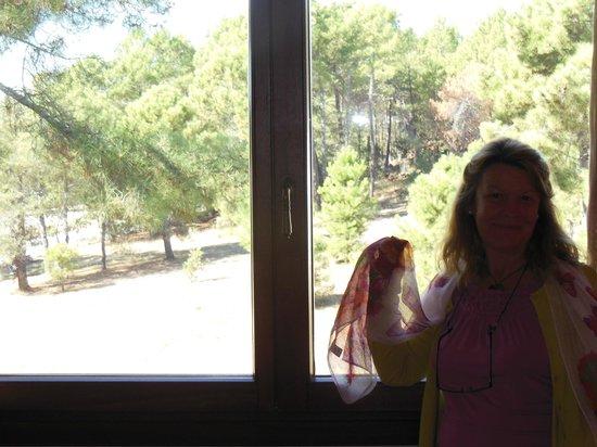 Posada del Infante. Posada Real : Vista desde la habitación