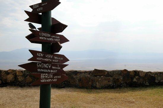 Ngorongoro Sopa Lodge: Aussicht in den Krater