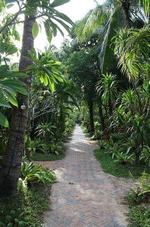 Chaweng Buri Resort: Buri Resort