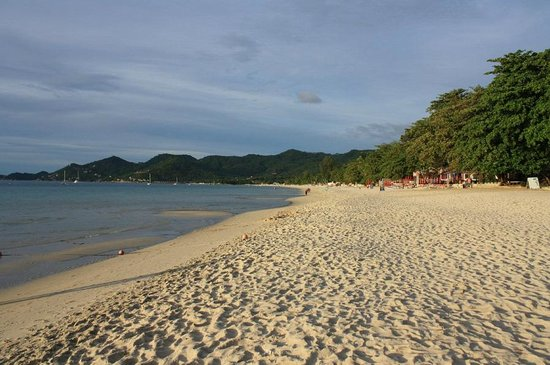 Chaweng Buri Resort: Strand am Morgen