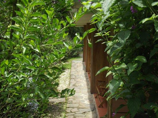 Mariposa Bed & Breakfast: terrasses devant la chambres