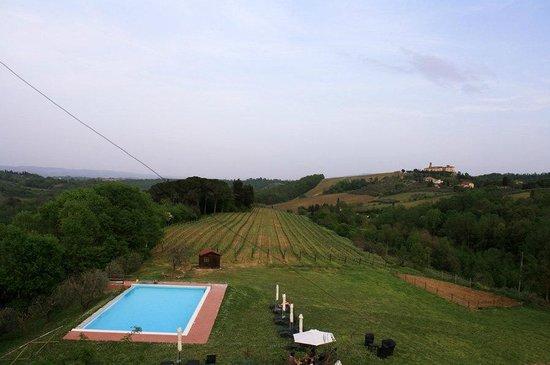 Agriturismo Poggiacolle: Blick auf den Weinanbau