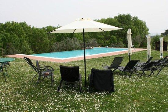 Agriturismo Poggiacolle : Pool