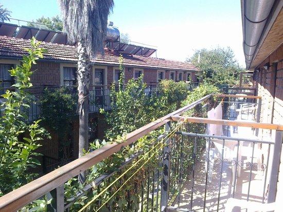 Leda Beach Hotel: Вид с балкона
