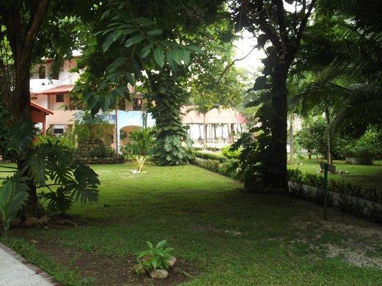 Hotel Las Brisas del Pacifico: jardin de l hotel