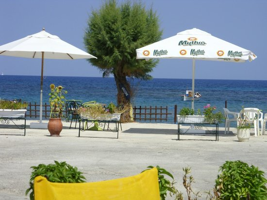 Mimoza Beach Bar