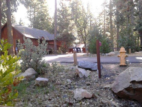 Evergreen Lodge at Yosemite: una cabina da fuori