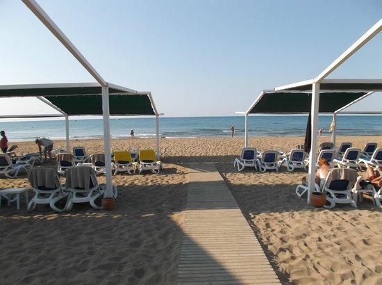 Alba Resort Hotel: Beach