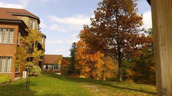 Auberge du Lac Saint-Pierre: l'automne et ses merveilleuses couleurs