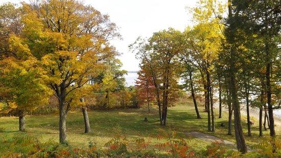 Auberge du Lac Saint-Pierre: feuilles automnales