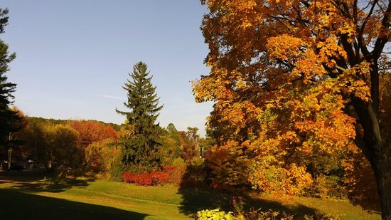 Auberge du Lac Saint-Pierre: les jardins