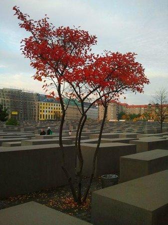 BerlinAndOut: Memoriale alle vittime dell'Olocausto