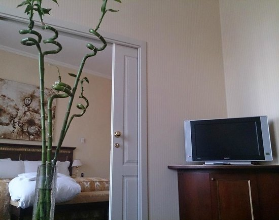Grand Hotel Yerevan : Bamboo in our room :)