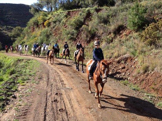 Arrocha Equitación
