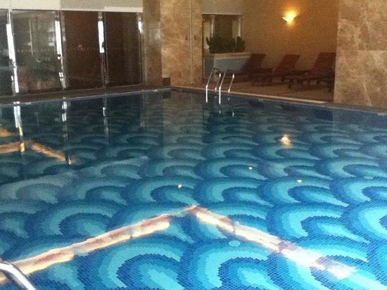 Leeden Hotel: The pool