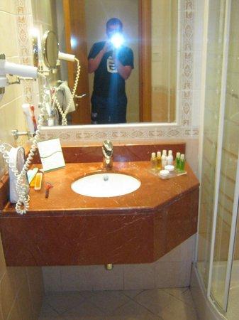 Sharjah Premiere Hotel & Resort: раковина и фен