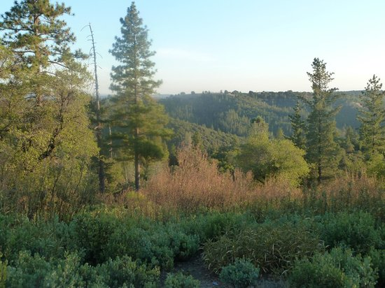 The Hanford House Inn : view from the deck!
