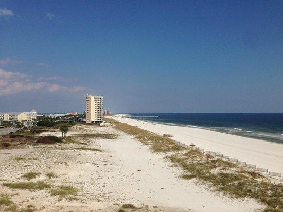 Hampton Inn & Suites Orange Beach : View East