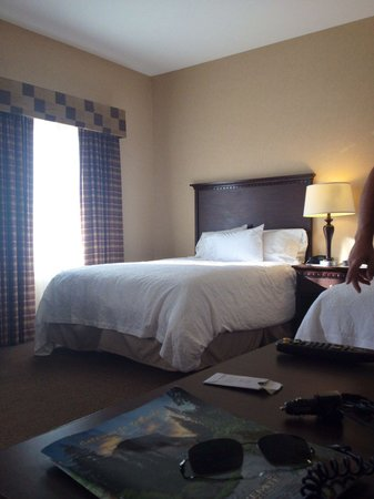 Hampton Inn & Suites Sacramento-Airport-Natomas: Our room