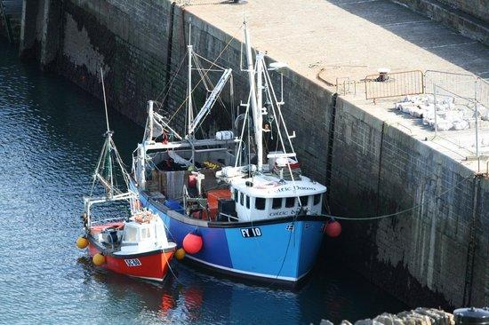 St Meva B&B: Harbour