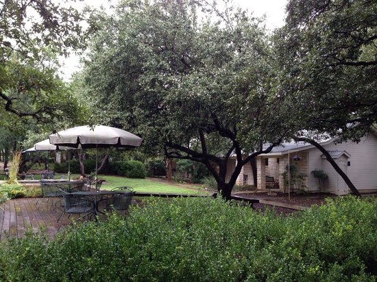 Wimberley Inn: Wonderful shade trees, beautiful lanscaping.