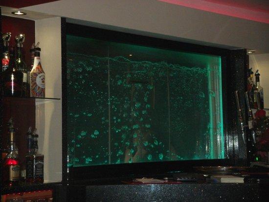 Taj Mahal: colour changing water tank