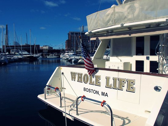 Constitution Marina's Bed & Breakfast Afloat : So when the sun shines....