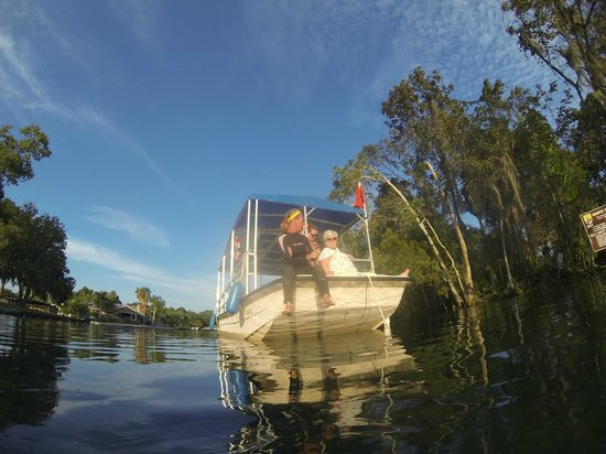 Plantation on Crystal River : Boat for the trip!