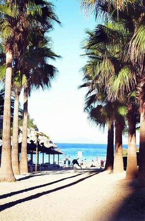 Occidental Cala Viñas: Cala Vinyes beach