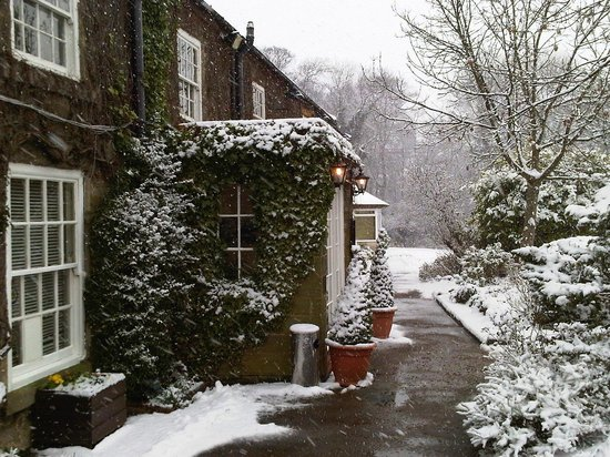 The Treebridge Hotel: snow view